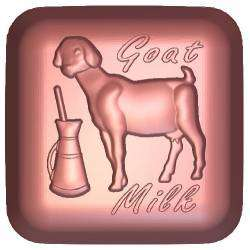 Goats Milk Soap Mould